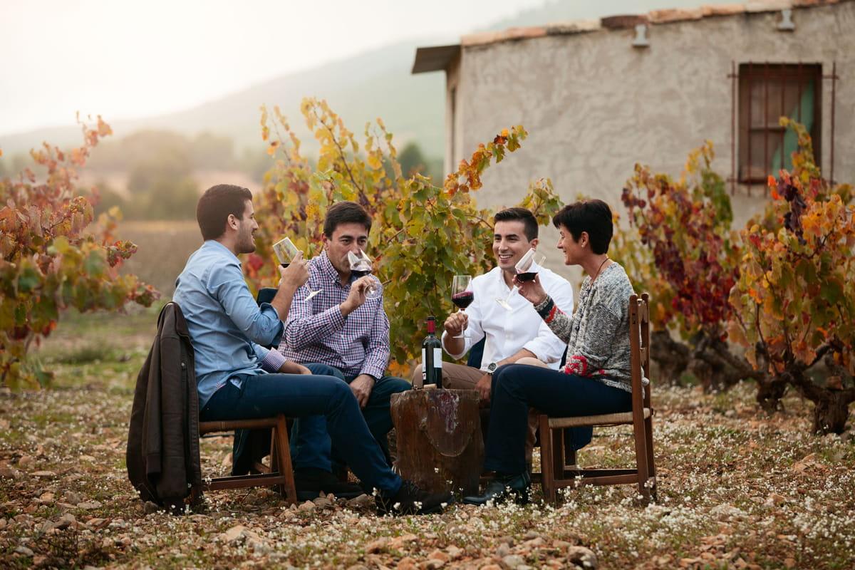 Visita nuestros viñedos